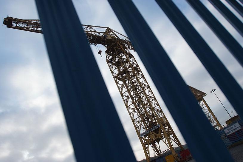 crane through bars of metal fence