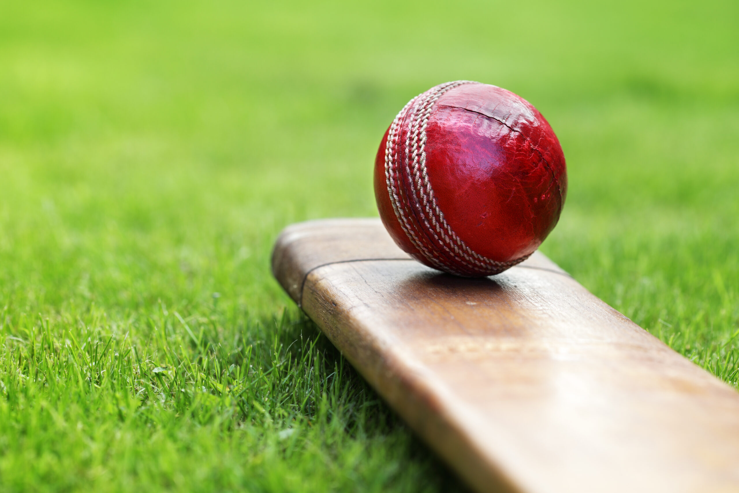 Henry Brothers Charity Cricket Match to raise funds for the Deer Shed Café at Alfreton Community Special School